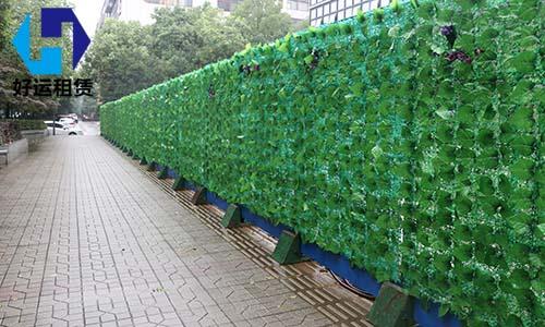 绿篱租赁围挡