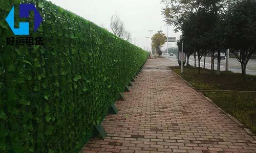 绿篱围挡租赁