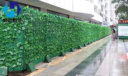 绿篱围挡出租